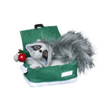Annalee Cooler Crook Racoon